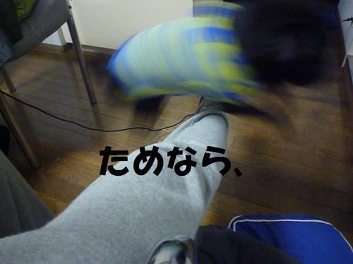 P1010611_2