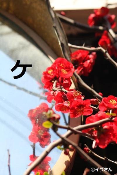 Img_1566_2
